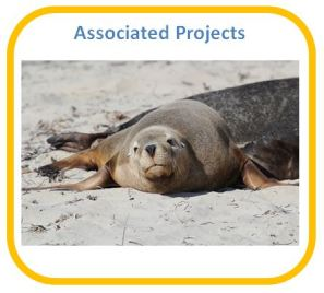 Associated Projects