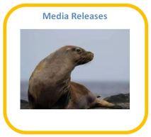 Media Releases