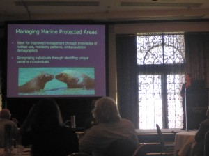 Key investigator Sylvia Osterreider presenting the Whisker Patrol project at the ICMMPA conference in Adelaide (Credit: Jo-Marie Acebes)